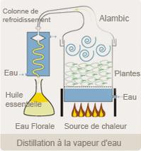 composition huile de massage